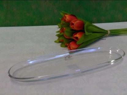Immagine di GLASS PLATE 30X9,5 ELEGANCE