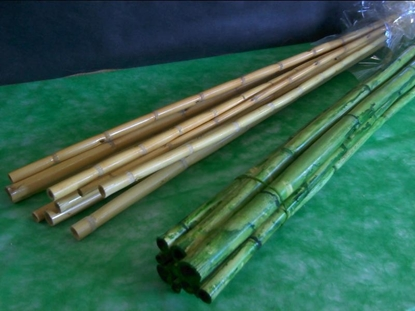 Picture of CANNA BAMBOO CM. 100  MAZZO X 10 PZ. NATURALE