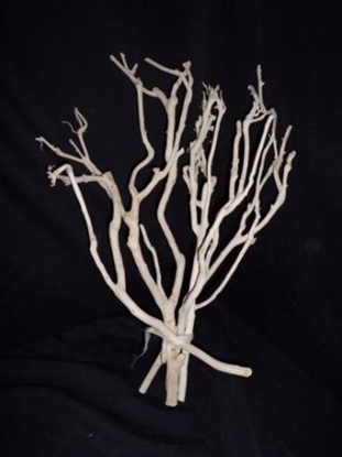 Picture of BRANCHES 45 CM. X 14 PZ. COL. BIANCO