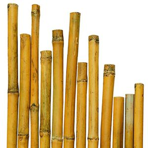 Picture of BAMBOO 3,95 mt D. 6-8 CM NATURALE