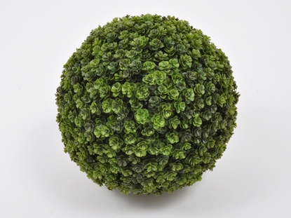 Immagine di BOXWOOD BALL 30CM