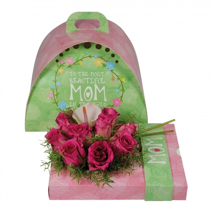 Picture of OASIS® floxi uni color mom 22,5x17,5x3,2 cm.