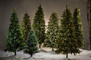 Picture for category Alberi di Natale