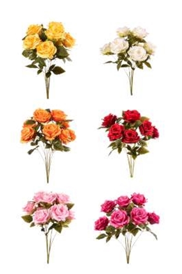 Picture of BUSH ROSE x 9