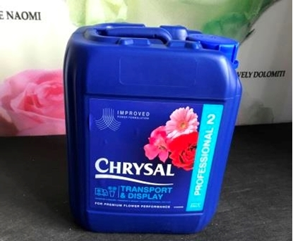 Picture of CHRYSAL PROFESSIONAL 2 NG 5 LT.