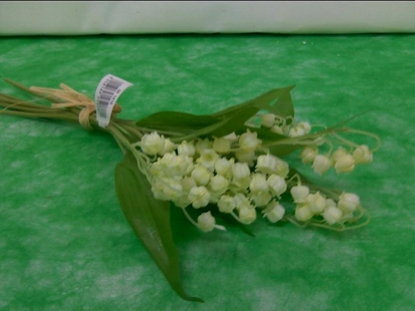 """Picture of 13"""" LILY OF VALLEY BUNDLE"""