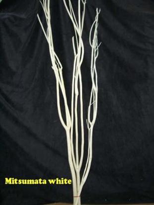 Picture of MITZUMATA CM. 100 X 3 PZ. bleach