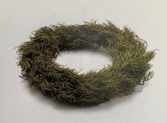Picture of Iron bush  wreath  48cm green