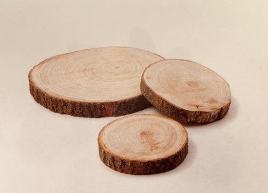 Picture of Woodslice  round ±25x25x4cm
