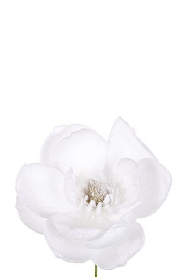 Picture of PICK MAGNOLIA INNEVATA WHITE